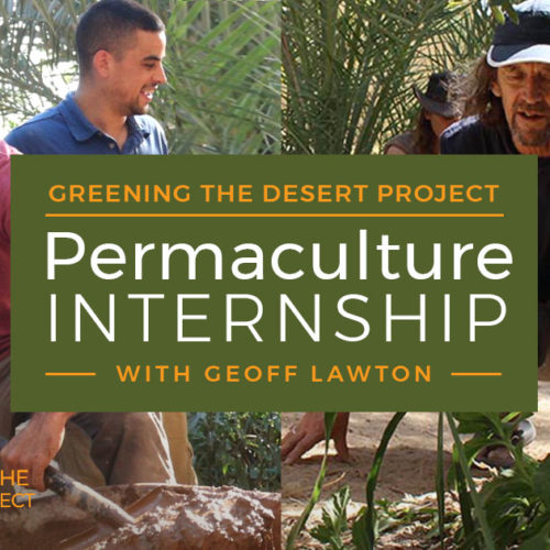 permaculture internship at the greening the desert project with geoff lawton